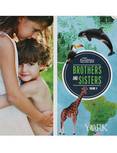 Brothers & Sisters 5