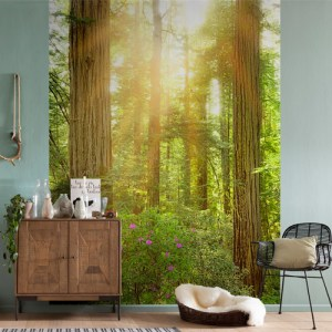 Brewster Wallcoverings Komar Into Illusions 2 Redwood Mural Room Setting