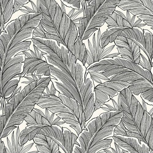 UK10005 Seabrook Wallcoverings Pear Tree Studios Mica Ruffled Palm Wallpaper Black and White
