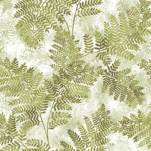2811-LV04353 Brewster Wallcovering Advantage Nature Cyathea Fern Wallpaper Light Green