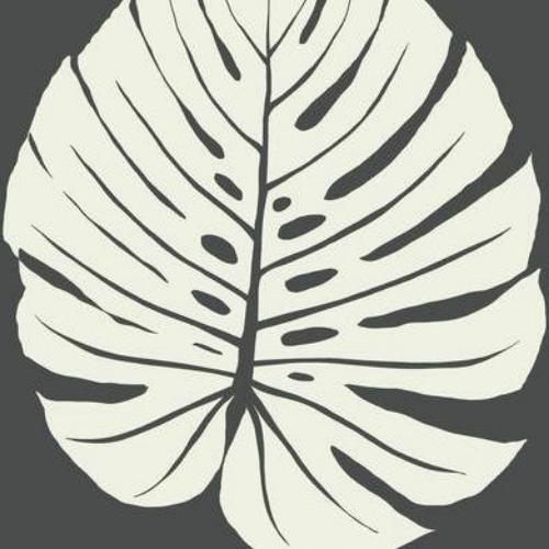 VA1236 York Wallcovering Aviva Stanoff Signature Collection Bali Leaf Wallpaper Black
