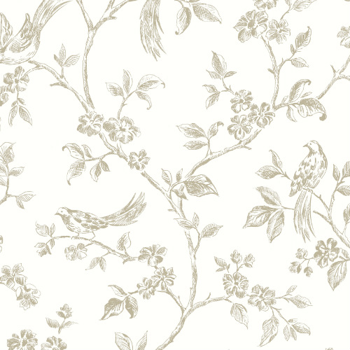 2813-24974 Brewster Wallcovering Advantage Kitchen Ray Bird Trail Wallpaper Taupe