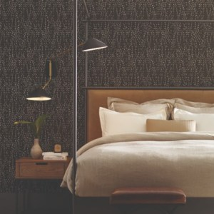 CI2351 Star Struck Wallpaper Brown Room Setting
