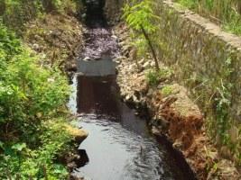Sungai tercemar buangan PT Dupantex Kab Pekalongan