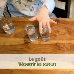 Le goût, découvrir les saveurs avec les ateliers gratuits Lelolife Montessori accessible à tous