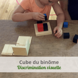 LeLoLife - Cube du binôme - Discrimination visuelle couleurs et dimensions