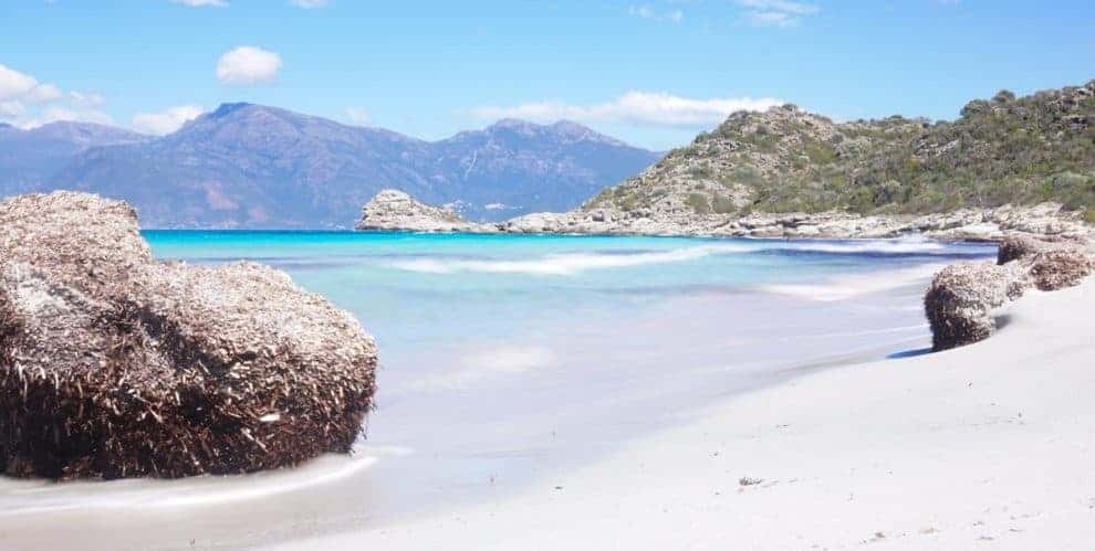 Guide to visiting Saleccia Beach and Loto Beach in Corsica, France