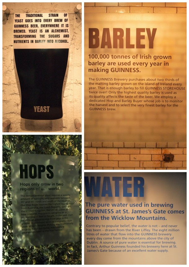 Guinness3