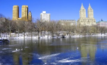 new york central park en hiver