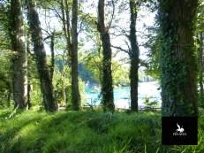 Riec-sur-Bélon