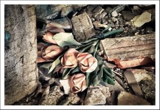 Les roses en plastoc