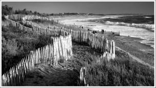Chemin des dunes
