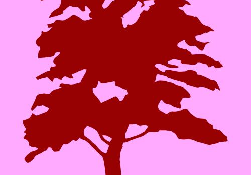20111026 is a tree