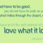 You do not have to be good – Mary Oliver cc-by lemasney