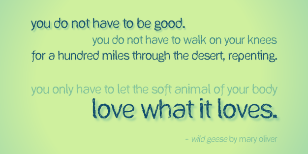 You do not have to be good - Mary Oliver cc-by lemasney