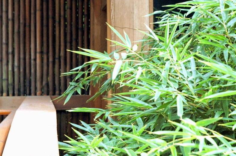 Jedediah Higgins house, Kingston, NJ, Bamboo, cc-by lemasney