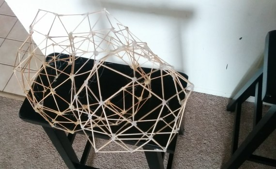 Geodesic model for organic home framing cc-by lemasney