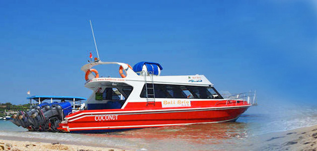Bali Brio Cruises