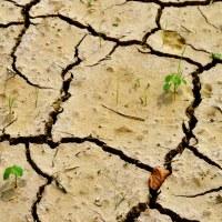 So dry