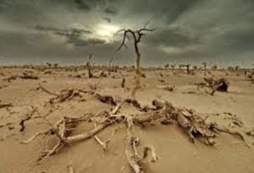 L'Afrique sera le plus durement touché par le changement climatique 8