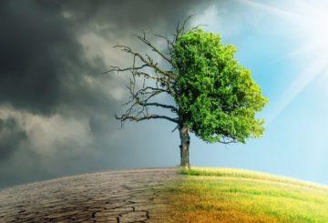 La prochaine crise financière sera causée par le changement climatique 5