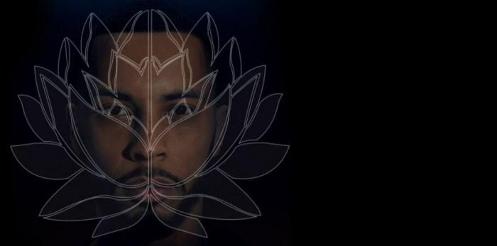 disiz-transe-lucide-fleur-de-lotus
