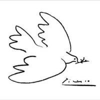 Picasso et sa colombe : leur combat pour la paix