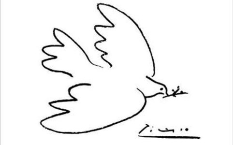 histoire colombe picasso