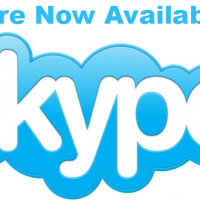 Book a Free Skype Consultation with LeMetric Today