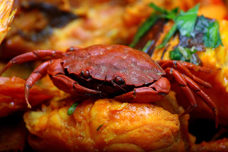 Miramar Restaurant Gastronomique Marseille Membre