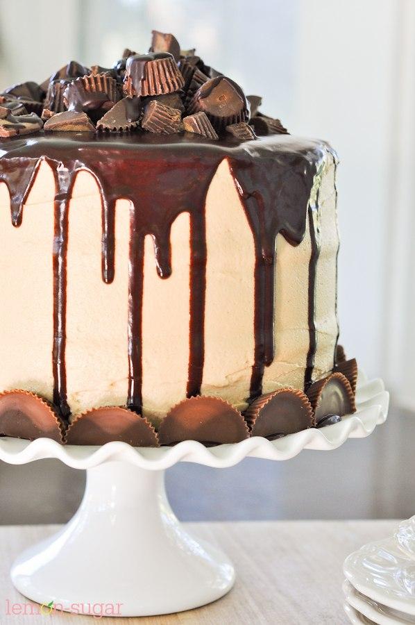 Peanut Butter Cake Recipe 9x13