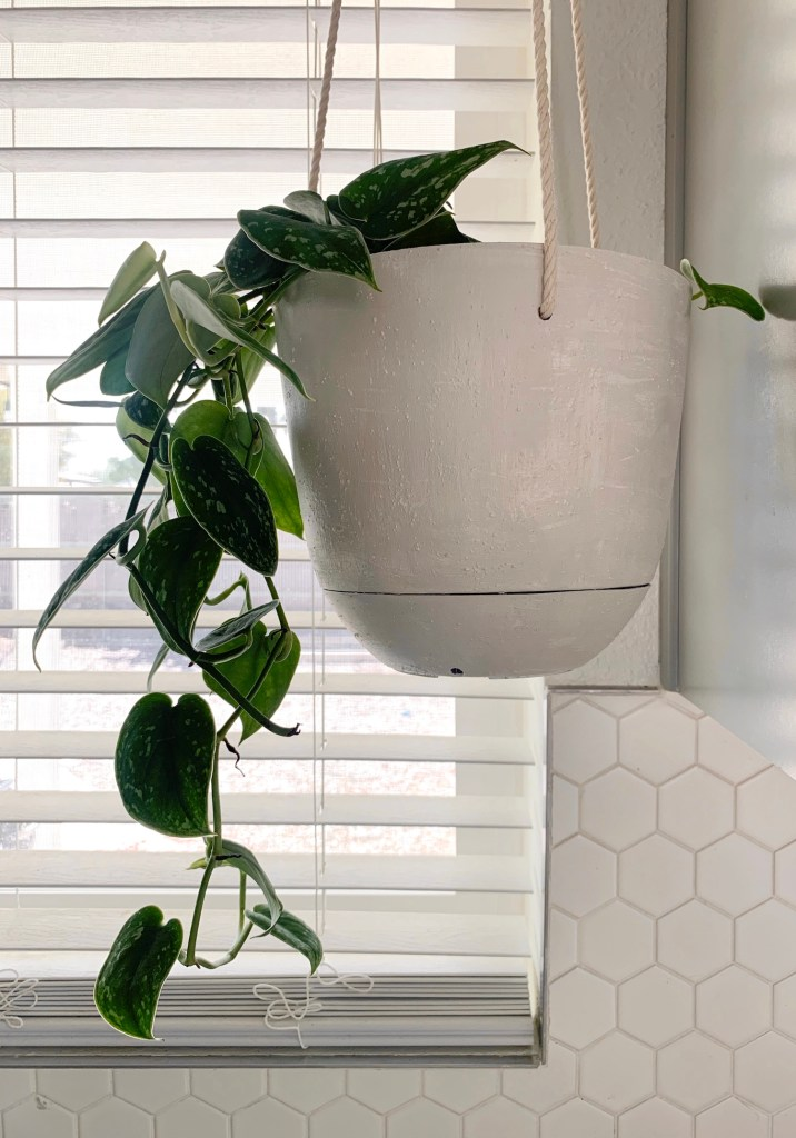 Diy Concrete Look Hanging Planter From A 3 Plastic Pot Lemon And Bloom