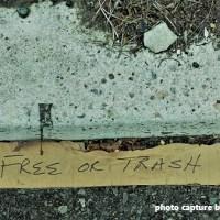 FREE or TRASH