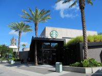 starbuck-disney-springs