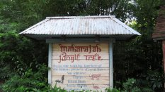 Maharajah-Jungle-Trek-7