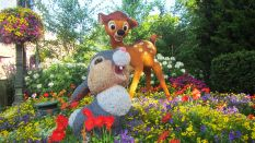 flower-and-garden-festival-epcot-15