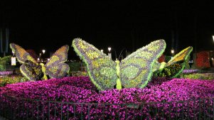 flower-and-garden-festival-epcot-5