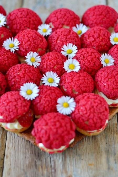 fraises pâquerettes choux