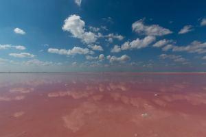 MEXICO – YUCATAN 2/3 – Looking for the pink flamingos