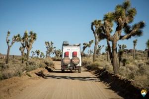 #2 – SAUVAGE : Carnets de route : Nos premières interviews