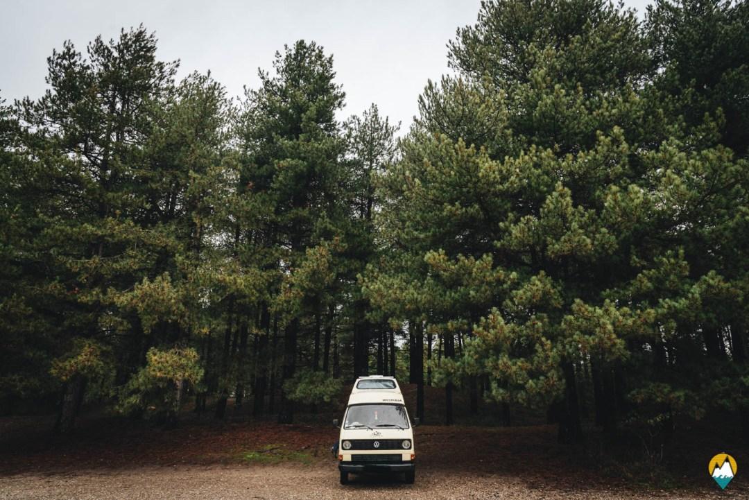 Baie de Somme - Parc ornithologique du Marquenterre - Karl, notre Volkswagen T3