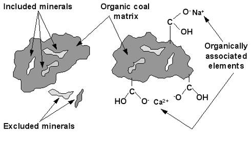 charbon_mineraux