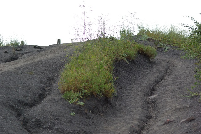 erosion_ravinement
