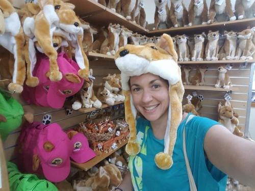 Selfie avec un dingo !