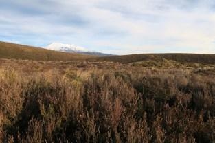 Mt Ruapehu bien enneigé