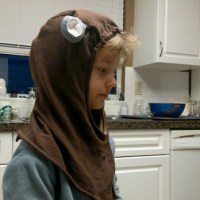 Ewok Encounters