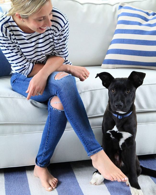 Boots and I are sharing our serious love for custom @societysocial furniture today on lemonstripes.com!