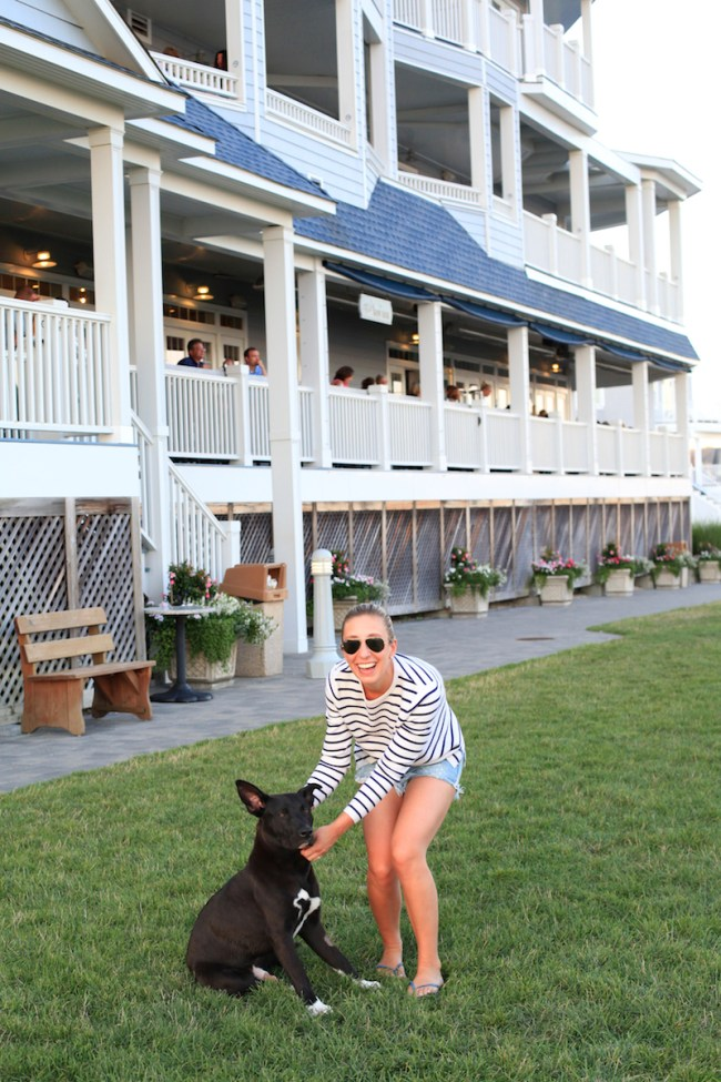 Dog Friendly Hotel in Connecticut