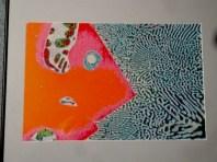 Fish 2 sample