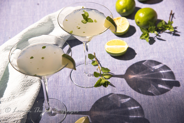 Refreshing Vodka Gimlet with Mint recipe.